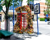 A photo booth at Easton with multi-colored flowers attached to it cascading down the sides to the ground.